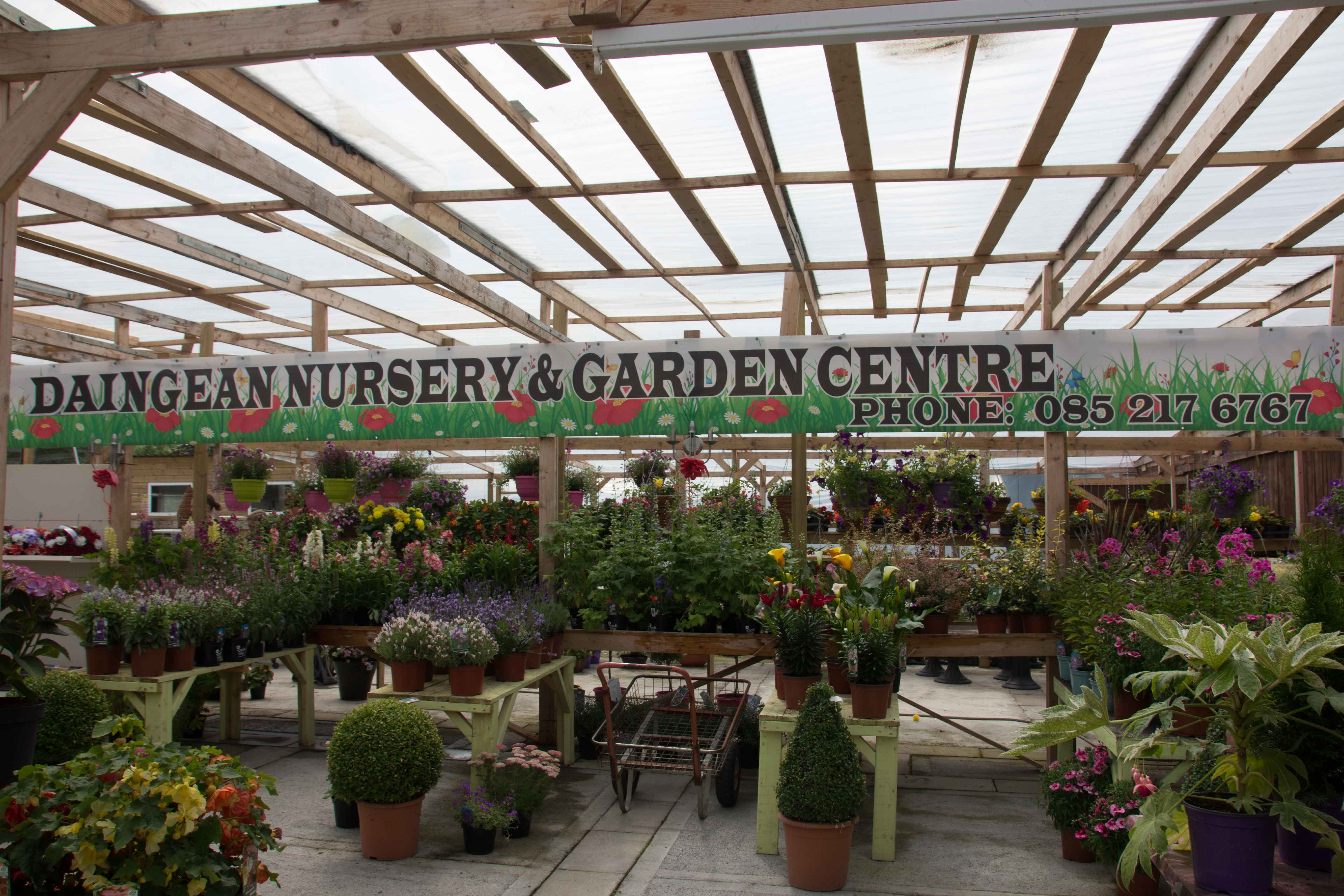 Daingean Nursery and Garden Centre